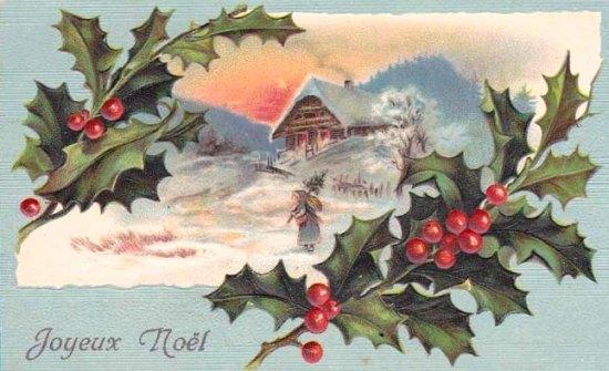 Gui houx et sapin v g taux marquant les festivit s de no l et du jour de l 39 an histoire - Decoration de noel avec du houx ...