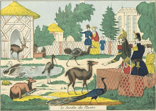 Lieux d 39 histoire jardin des plantes paris ouvert au for Au jardin des plantes poem
