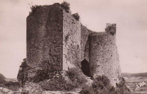 Ruines du château de Penne (Tarn)